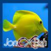 jonafish
