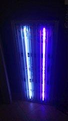 Lumina_1054_09.jpg