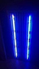 Lumina_1054_10.jpg